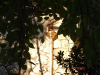 κωστουλας  δημητρης-site-συλεκτες (265)